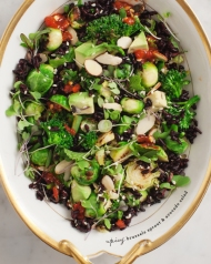 Brussels Sprout & Avocado Salad